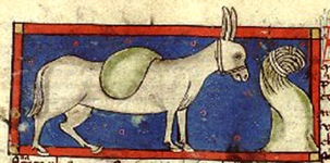 Middle Ages donkey